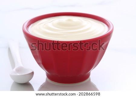 Delicious, nutritious and healthy fresh plain yogurt on vintage french cafe au lait bowl. - stock photo