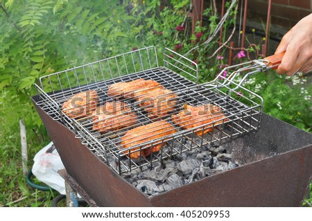 Delicious pieces of chicken in spices on the grill  ?