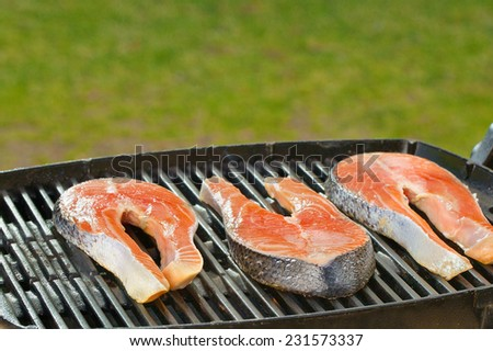 Delicious  portion of fresh salmon fillet on a grill or BBQ