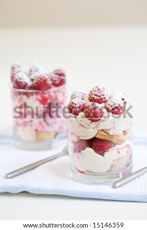 Delicious raspberry dessert with cream and lady fingers