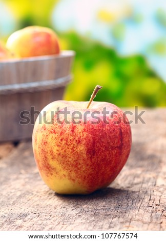 Delicious red and green apple outdoors in front of an apple tree meadow. On an aged old wooden background. For organic food concepts - stock photo