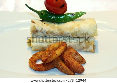 Delicious rolls stuffed meat served with fries and onion rings. - stock photo