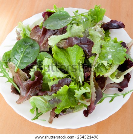 Delicious salad of different types of lettuce leaves dressed with olive oil - stock photo