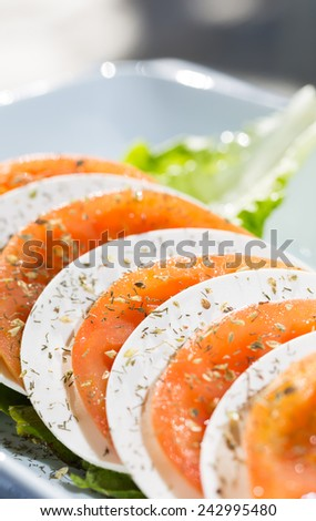 Delicious salad of tomato and fresh Mediterranean cheese - stock photo