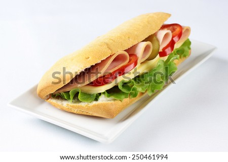 Delicious salami sandwich with lettuce, cheese and tomatoes - stock photo