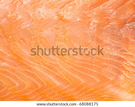 Delicious salmon fillet closeup
