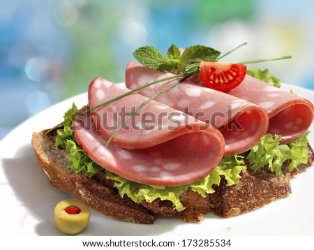 Delicious sandwich with sausage and greens / HQ studio shot of meat products on white plate  - stock photo