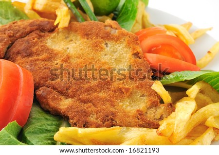 delicious schnitzel - stock photo