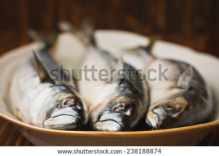 Delicious sea fish mackerel