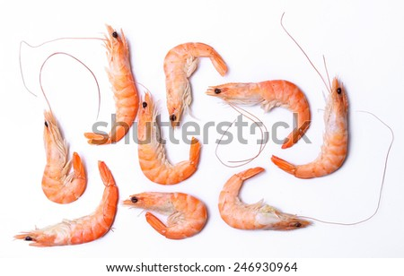Delicious shrimps on a white background - stock photo