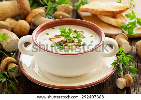 Delicious soup puree with wild mushrooms. - stock photo
