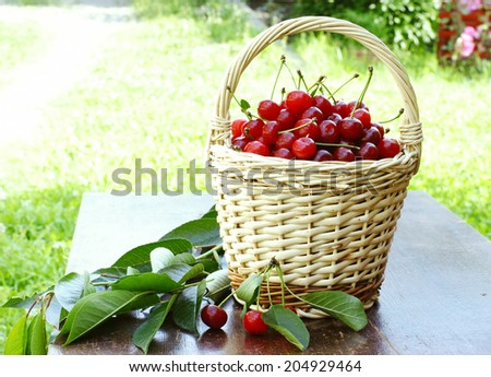 delicious sour cherries in a basket - stock photo