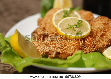 Delicious spiced catfish escalope in sesame - stock photo