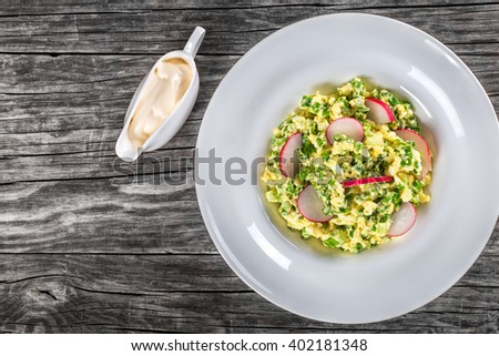 Delicious Spring onion, eggs, radish salad in a white dish on an old rustic wooden table with sauce in a gravy boat, horizontal top view - stock photo