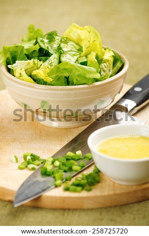 delicious spring salad with fresh cucumber and lettuce closeup