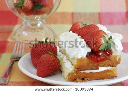 delicious strawberry shortcake on colorful plaid tablecloth
