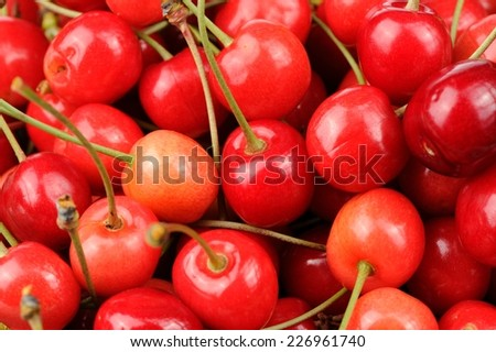 Delicious Sweet Cherries Close-Up - stock photo