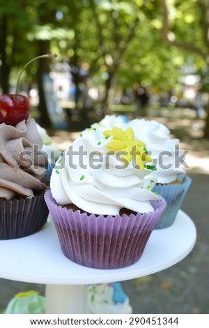 delicious, sweet cupcakes decorated with cream, chocolate cream, cinnamon, cocoa.decorated with fresh, natural, organic fruit (cherry, raspberry, strawberry), sugar mastic