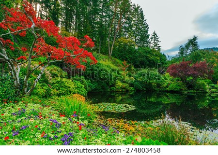 Delightful landscaped and floral park Butchart Gardens on Vancouver Island. In a small pond, overgrown with lilies, reflected trees and flowers - stock photo