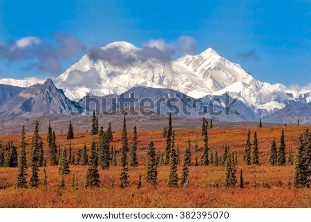 Denali (formerly Mt McKinley) towers over the fall colors in Broad Pass in Alaska - stock photo
