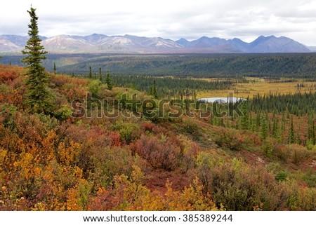 Denali Highway landscape in Alaska - stock photo