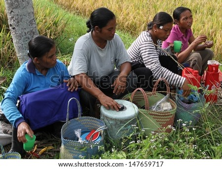 DENPASAR, INDONESIA - MAY 12:  A traditional scene of  local Balinese women workers taking a break in the rice fields during harvest season taken in Ubud, Denpasar, Bali, Indonesia on May 12, 2013.