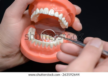 Dental model, observation using dental mirror - stock photo