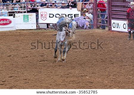 DENTON,TX - AUGUST 22 : Competitor rides a bucking horse at Denton Fairgrounds during North Texas State Fair August 22, 2009 in Denton, Texas. - stock photo