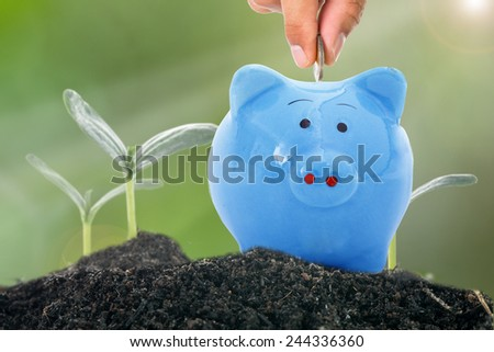 Deposit money to piggy bank for growing finance   - stock photo