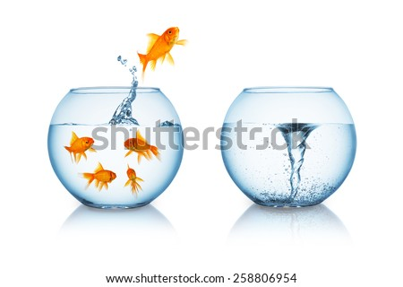 depressive goldfish jumps in to a fishbowl with a twister  - stock photo
