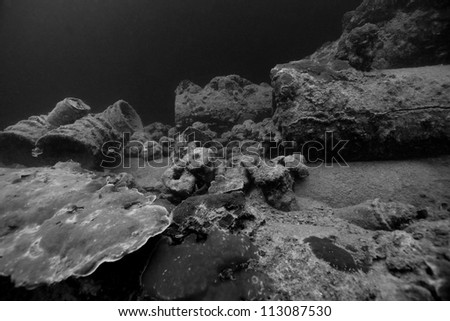 Depth charges, helmets, and other artifacts scattered amongst ruins of the Helmut Wreck, an Japanese cargo ship sunk by American forces during World War II off the islands of Palau in Micronesia. - stock photo