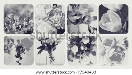 desaturated collage with flowers
