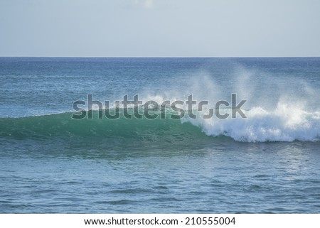 Description:  An ocean swell begins to break. Title:  Wave.