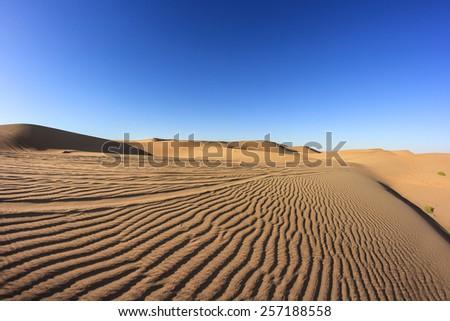 Desert Abu Dhabi - stock photo