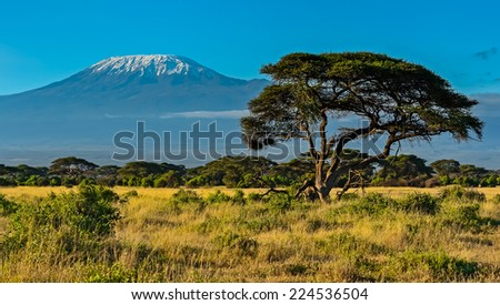 Desert African savannah in Amboseli National Park. Kenya. Africa - stock photo