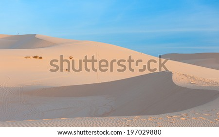 desert at dawn