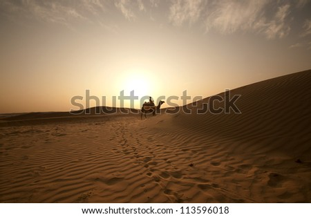 Desert, Camel Ride, Enjoying People