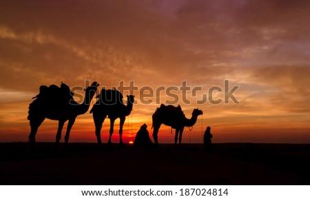 desert during sun set - stock photo