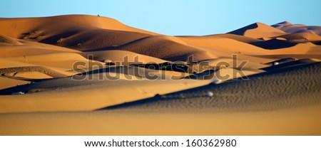 desert during sunrise - stock photo