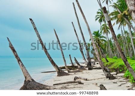 Desert island coastline after Tsunami, Banyak Archipelago, Aceh, Indonesia, Southeast Asia - stock photo