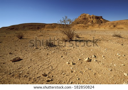 Desert landscape in yellow and blue shades