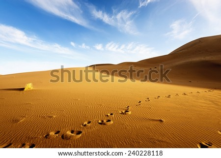desert landscape with blue sky. Dunes background - stock photo