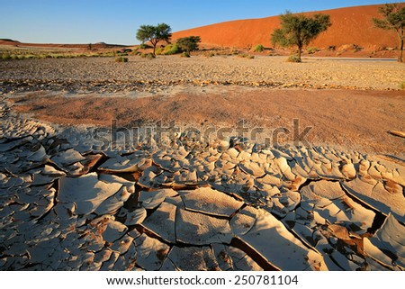 Desert landscape with cracked mud, Acacia trees and red sand dunes, Sossusvlei, Namibia - stock photo