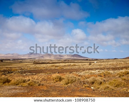 Desert landscape with hills and dry yellow grass under bright blue sky - stock photo