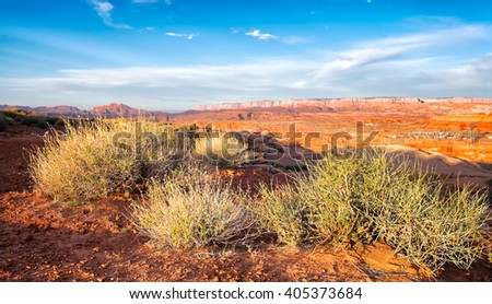 Desert landscape with sagebrush close up in the foreground. Colorful early morning light. - stock photo