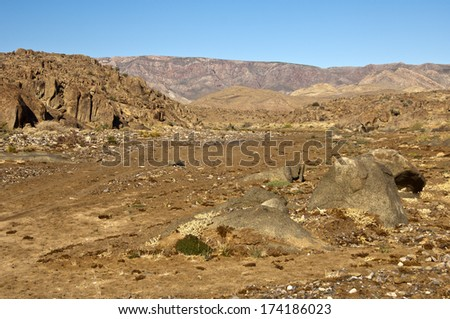 desert-like landscape in the Richtersveld, africa