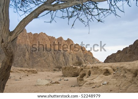 Desert mountain lansdcape at sunset with a blue sky background. Sharm el Sheikh, South Sinai, Egypt.