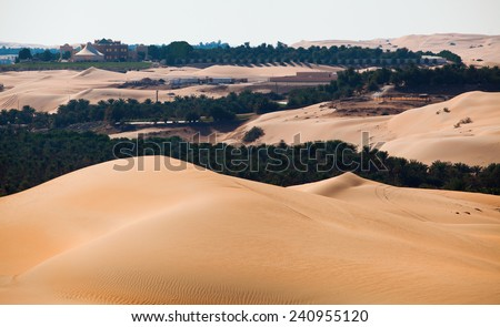 Desert Oasis, Arabian peninsula (Oman and UAE). Date palm plantations between sand dunes. - stock photo