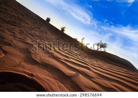 Desert of United Arab Emirates in a dramatic scene - stock photo