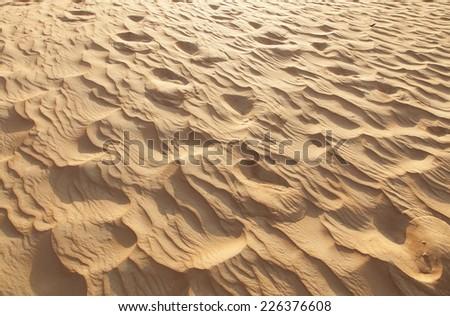 desert on United emirate desert safari   - stock photo